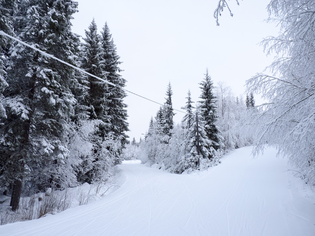 Tag 08: Winterspaziergang