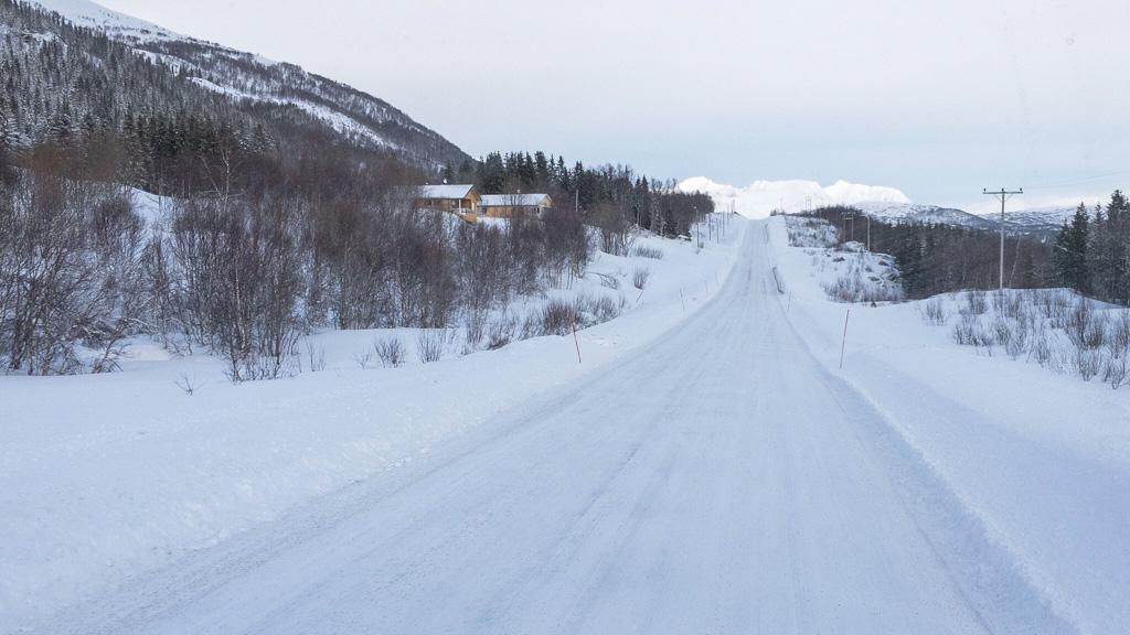 Tag 20: Busfahrt nach Narvik