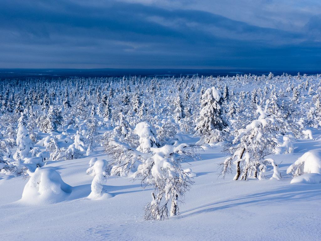 Tag 27: Auf dem Tag 27: Abstieg zum Jorpulipää