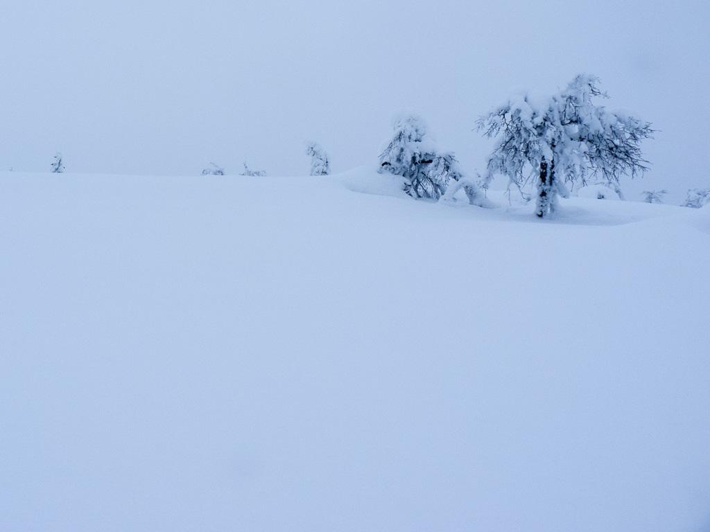 Tag 27: Aufstieg zum Jorpulipää
