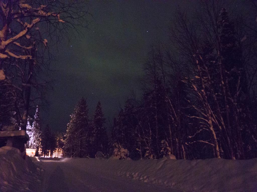 Tag 30: Polarlichter über Tankavaara