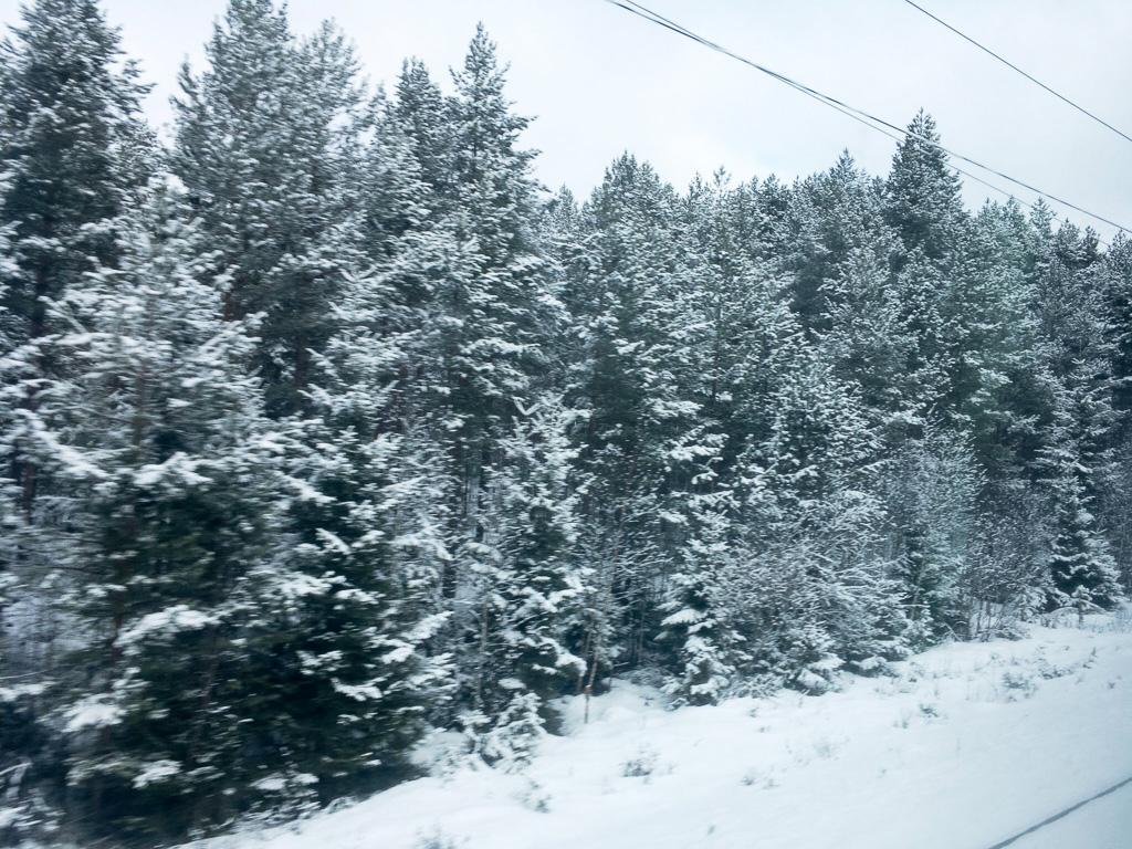 Tag 34: Unterwegs nach Joensuu