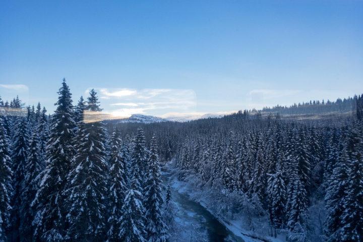 Winterlandschaft mit Fluss und Bäumen auf der Winter auf der Nordlandsbanen von Trondheim nach Bodø